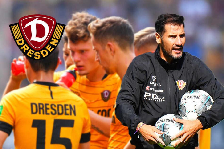 Dynamo-Coach Fiel wehrt sich gegen die Systemfrage