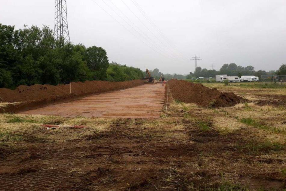 Für die Bauarbeiten wurde bereits ein Waldstück gerodet.
