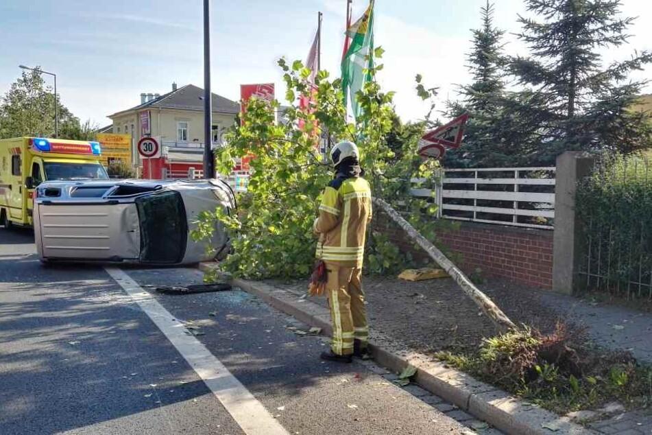 Der Baum wurde bei dem Unfall komplett entwurzelt.