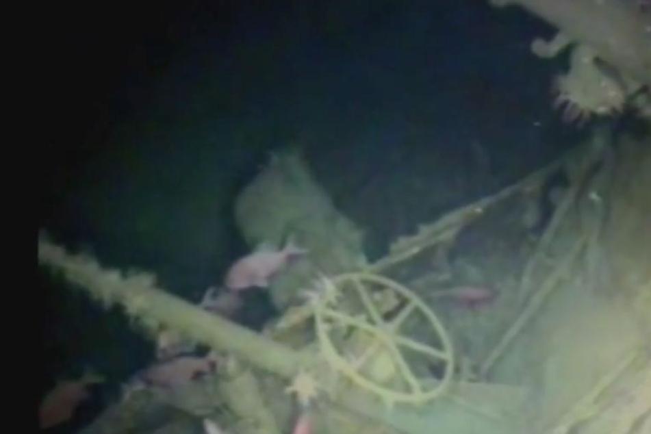 Nach über hundert Jahren wurde das verschollene U-Boot im Pazifik entdeckt.
