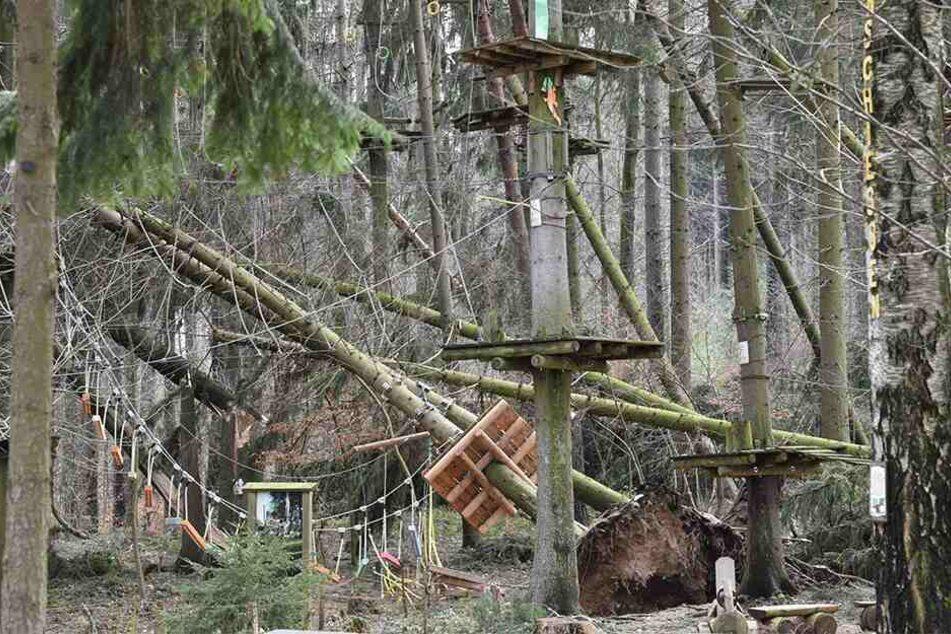 Ein Bild der Verwüstung: Pfähle sind abgeknickt, Bäume entwurzelt.