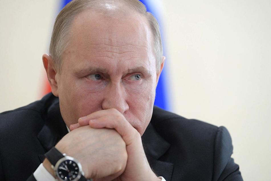 Der russische Präsident Wladimir Putin hofft auf baldige Ergebnisse.