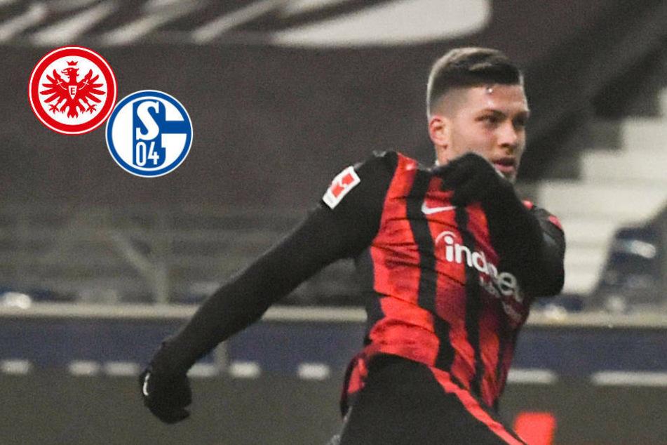 Was für ein Einstand: Luka Jovic ballert Eintracht Frankfurt zum Sieg gegen Schalke!