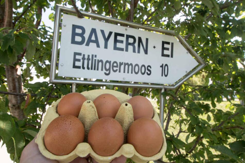 """Eier werden vor ein Schild mit der Aufschrift """"Bayern - Ei"""" nahe dem Betriebsgelände der Firma gehalten."""