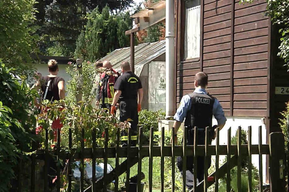 Horror-Fund! Leiche in Gartenteich entdeckt
