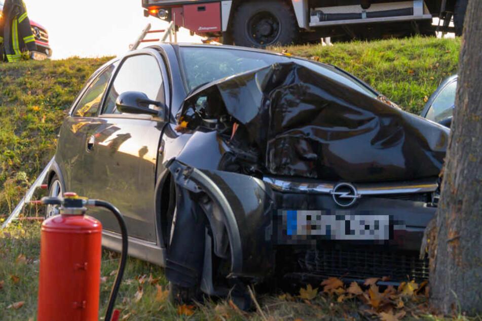 Fahrer kracht gegen Baum und wird schwer verletzt
