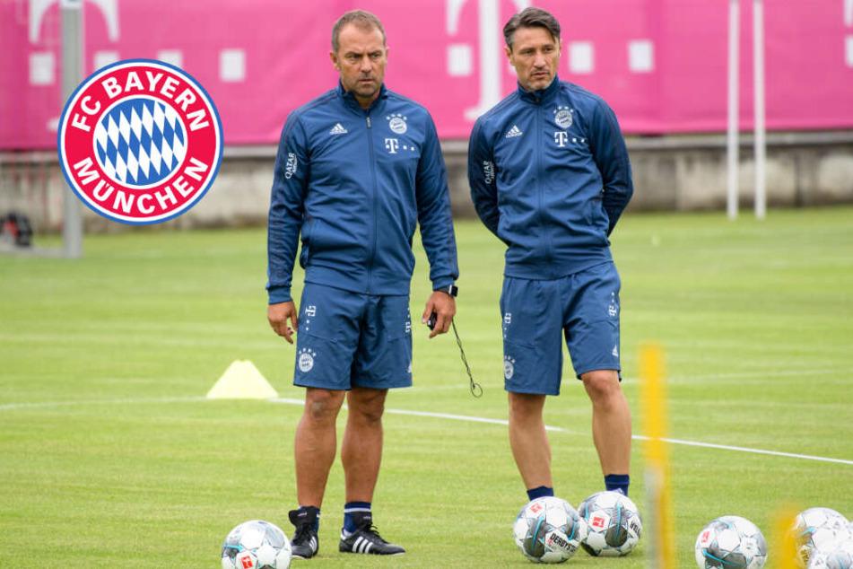 Schock im Bayern-Training: Mann bedrängt Niko Kovac!