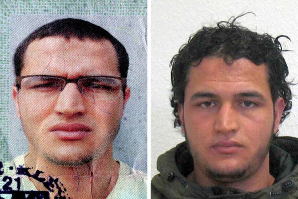 Der europaweit gesuchte mutmaßliche Attentäter von Berlin, Anis Amri (24), ist in Mailand getötet worden.
