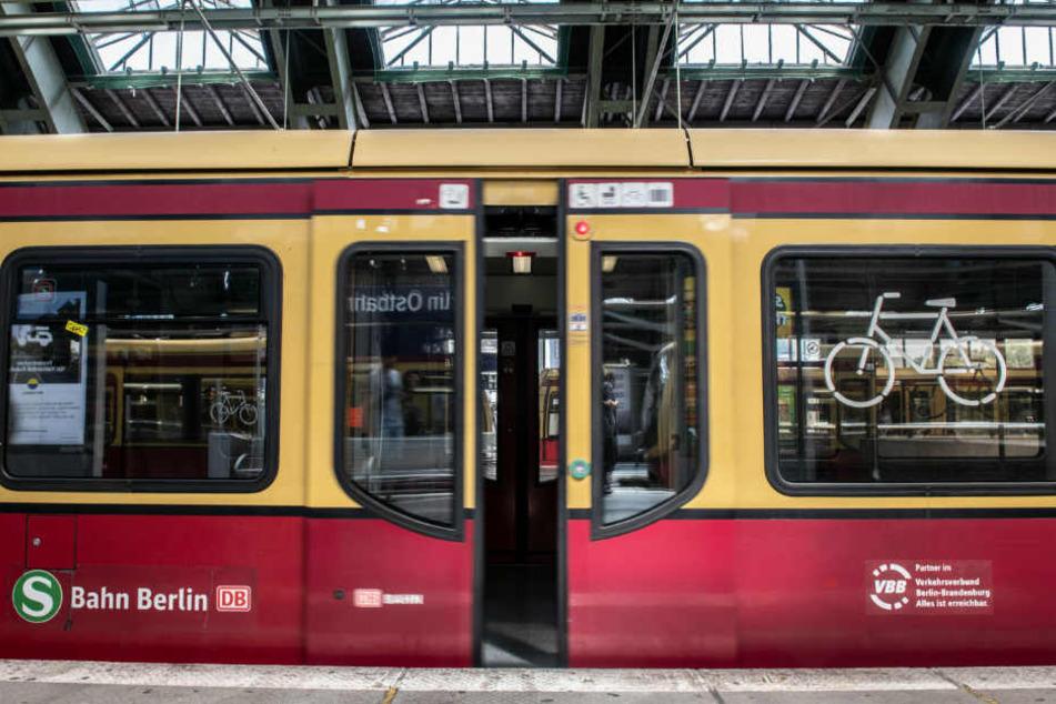 Der Mann soll in der S-Bahn onaniert haben.