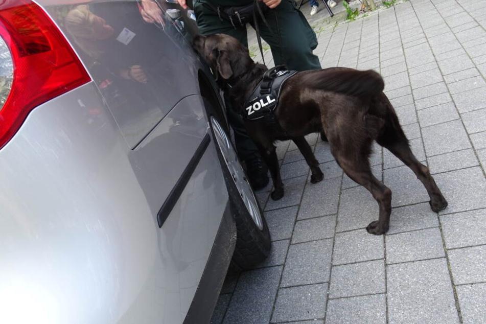 Bei der Kontrolle des Kleinbusses gaben die Insassen zuerst an, nichts dabei zuhaben, doch die Beamten schauten genauer hin. (Symbolbild)