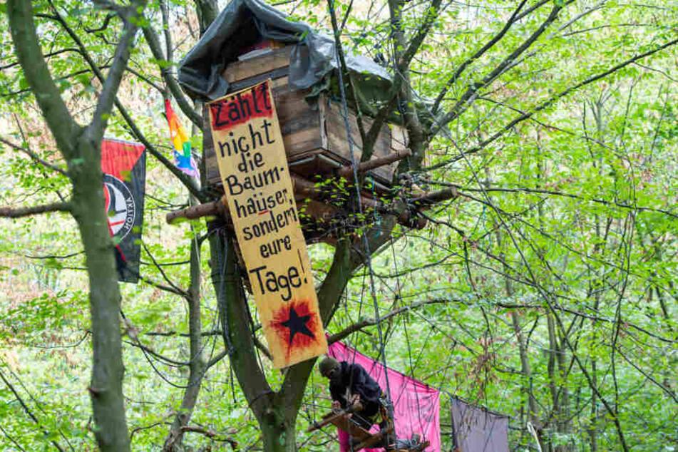 """Das gibt's wirklich! Anleitung zu """"Wie besetze ich den Hambacher Forst?"""""""