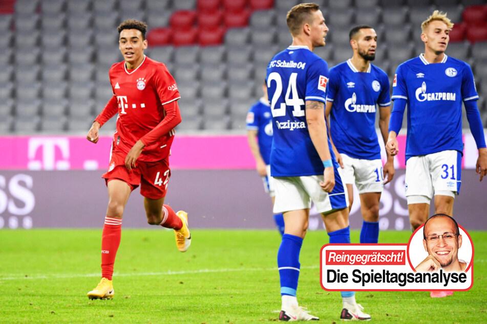 TAG24-Fußballredakteur Stefan Bröhl beschäftigt sich in seiner wöchentlichen Bundesliga-Kolumne diesmal mit dem peinlichen Auftritt des FC Schalke 04 beim FC Bayern München und Werder Bremens schwachem Auftritt gegen Hertha BSC.
