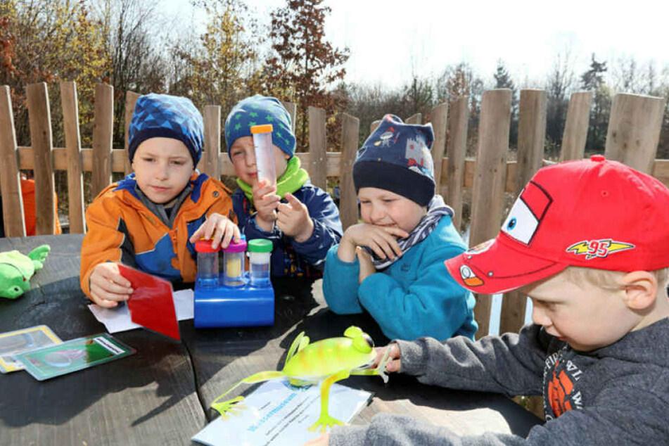 Die Kinder können experimentieren und ihre Wasserproben untersuchen.