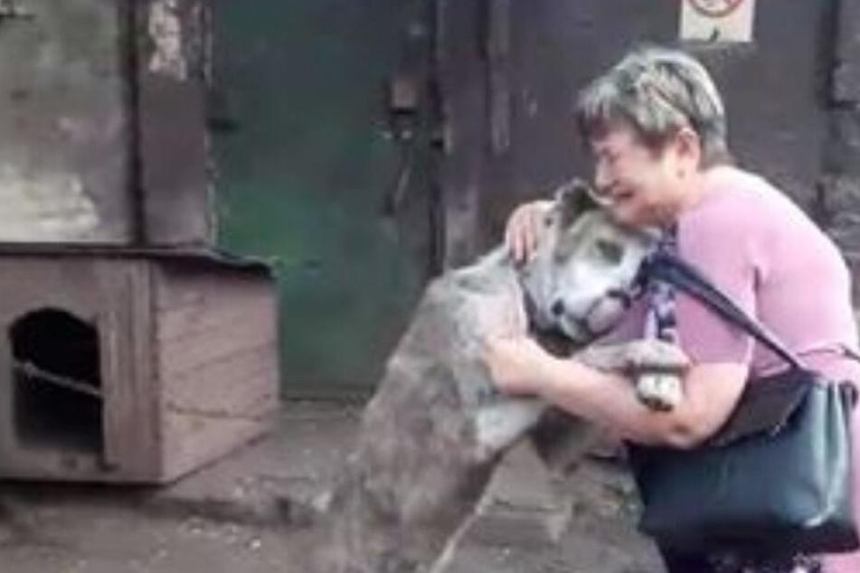 Das Wiedersehen zwischen Frauchen und Hund war tränenreich.