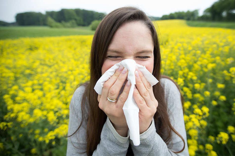 Hatschi! Allergiker trauen sich oft im Frühling und Sommer kaum aus dem Haus.