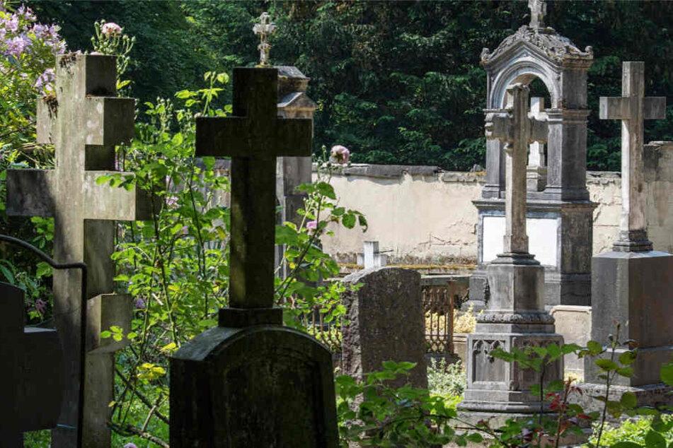 Zwischen den Grabstätten trat plötzlich ein Mann mit entblößtem Geschlechtsteil hervor (Symbolbild).