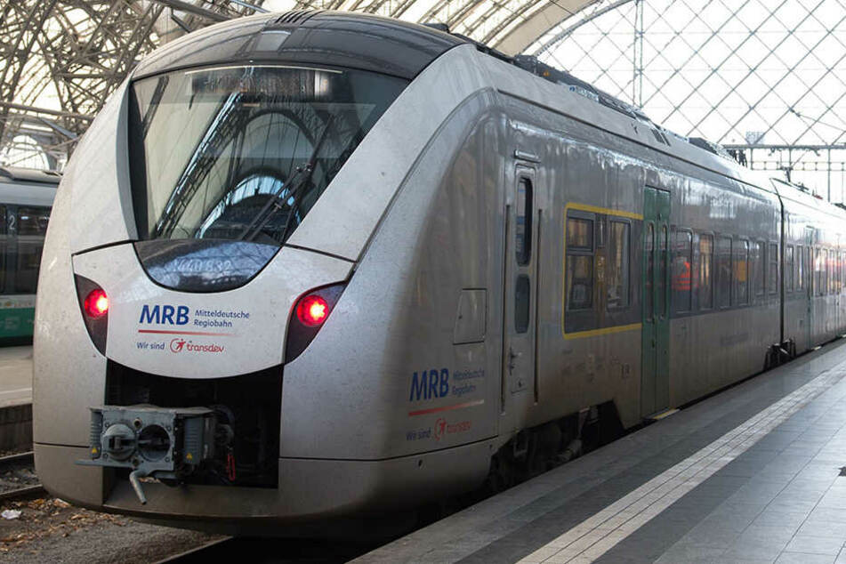 Die Tat passierte im Zug MRB 26930 von Dresden nach Hof. (Symbolbild)