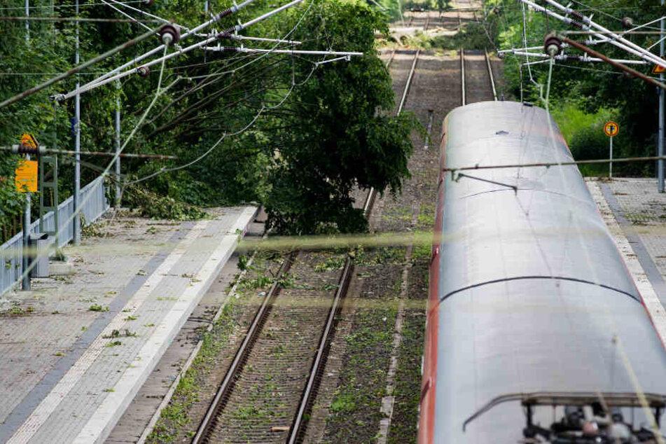 Auswirkungen auf den Berufsverkehr am Donnerstagmorgen gab es nach Bahnangaben nicht. (Symbolbild)