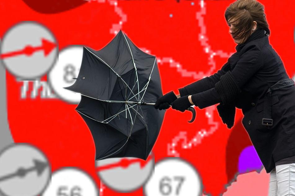 Alarmstufe rot! Orkanböen rollen auf Thüringen zu