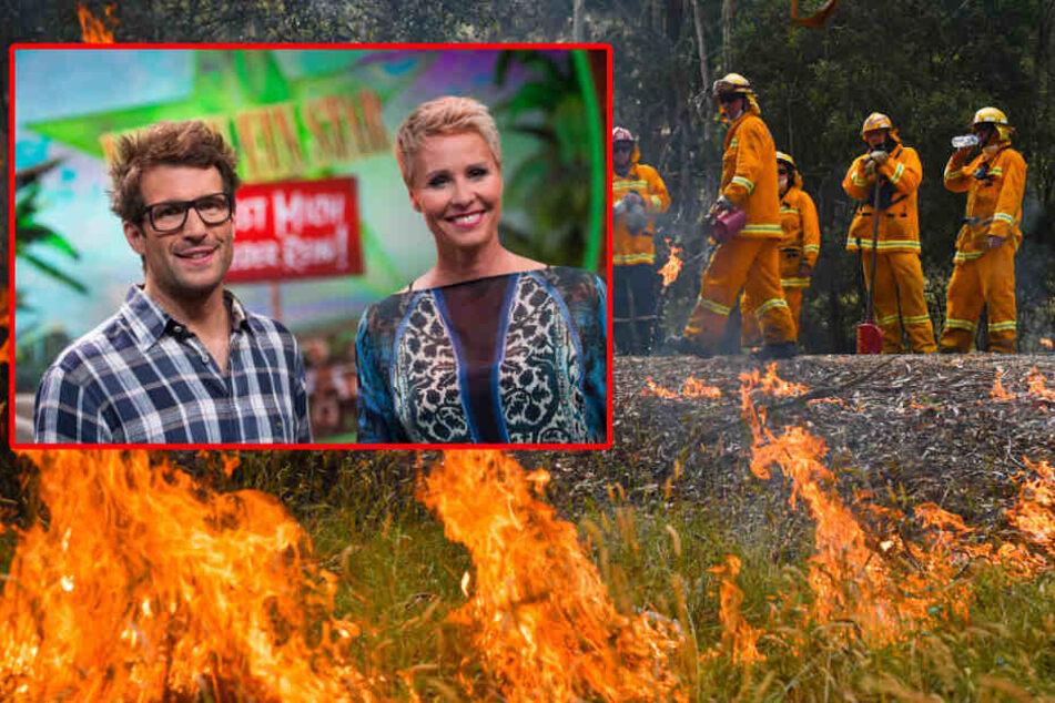 Dschungelcamp: Dschungelcamp im australischen Inferno: RTL sammelt Spenden