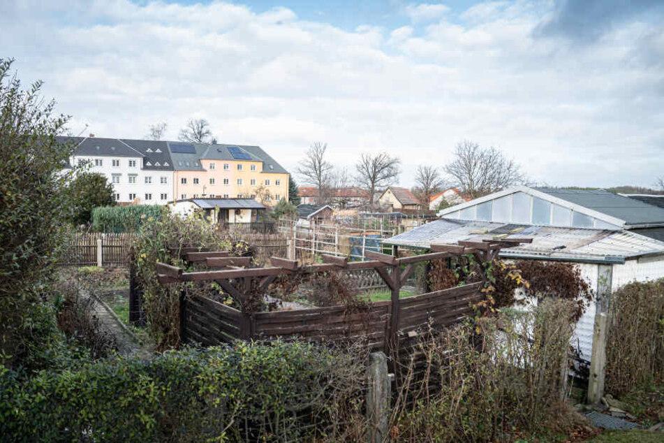 40 Gartensparten sollen Eigenheimen weichen. Der Investor macht bald ernst und beginnt mit den Bauarbeiten.