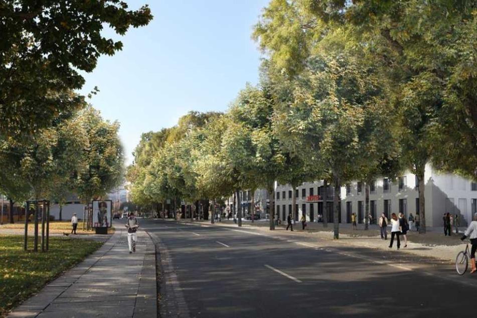 So sollte der Promenadenring in Höhe des Dr. Külz-Rings aussehen.