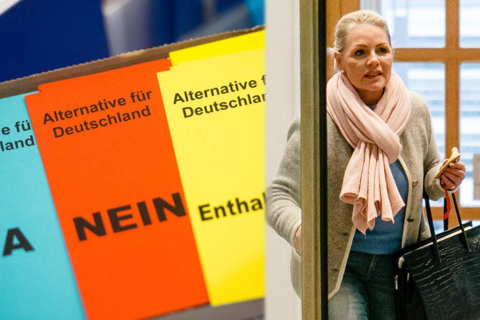 AfD will Sayn-Wittgenstein aus der Partei werfen, doch die liebäugelt erneut mit Landesvorsitz