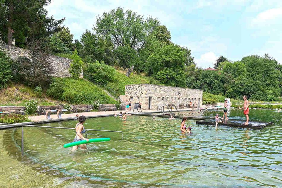 Herrlich: Das Zschonergrundbad wurde zum beliebtesten Freibad von ganz Deutschland gewählt.