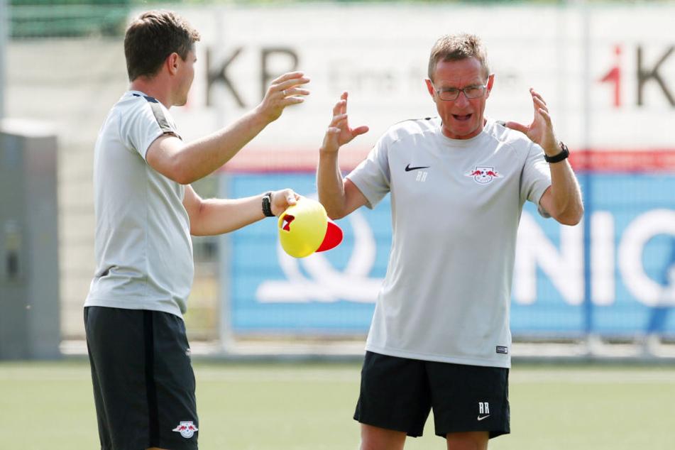 Wilde Diskussionen: Trainer Ralf Rangnick (r., neben Co-Trainer Robert Klauß) wollte das Testspiel gegen Huddersfield gar nicht bestreiten.