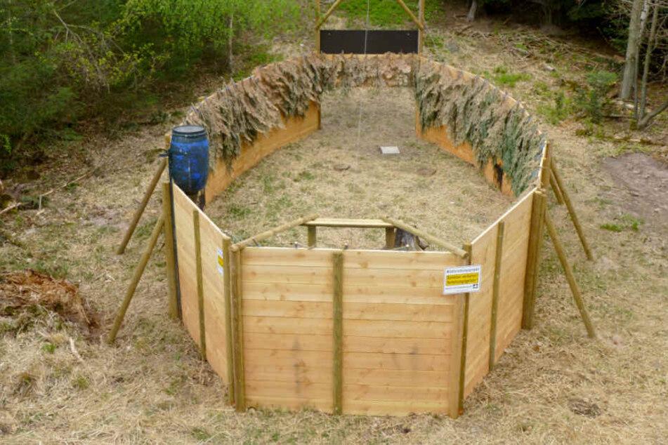 Zum Einfangen von Wildschweinen wurden auch sogenannte Saufänge erprobt.