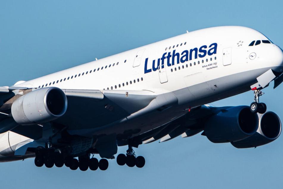 Feuer an Bord von Lufthansa-Maschine? A380 muss umkehren