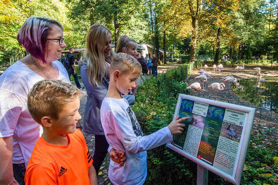 Maximus (v.l.) und Adrian (r.) erkunden mit ihren Müttern Marlen (l.) und Gloria (M.) den Tierpark. Zusammen mit dem Wildgatter bietet er Ferienführungen an.