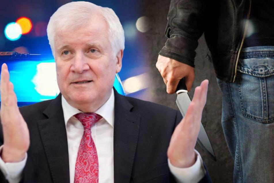 Innenminister Horst Seehofer (69, CSU) warnt vor Schwarzmalerei in puncto Kriminalität. (Bildmontage)