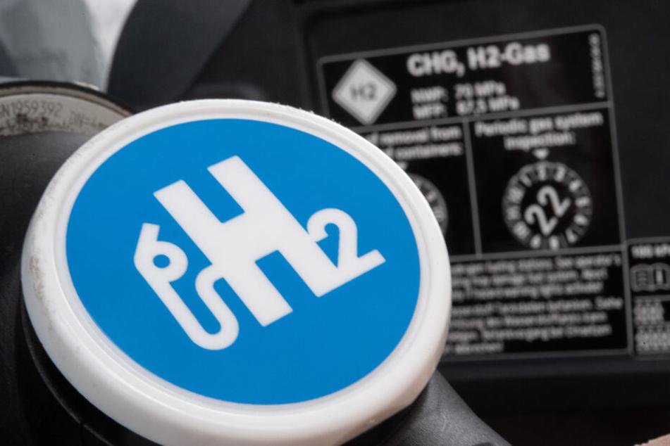 Die FDP hat insbesondere Wasserstoff als Alternative für den Verbrenner im Blick.