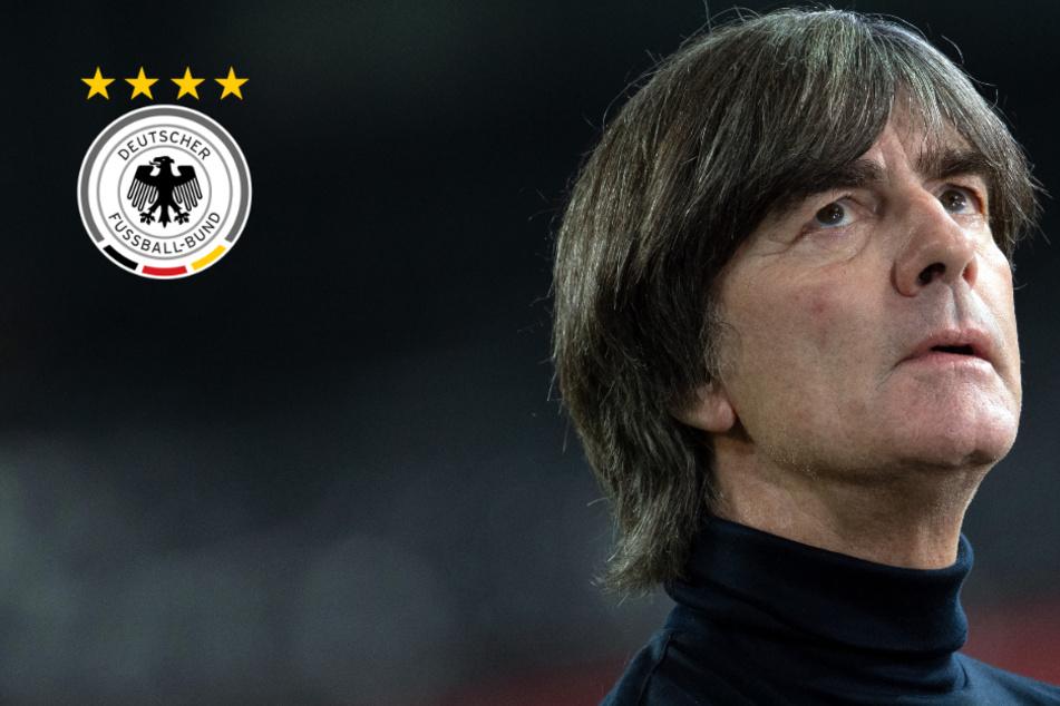 Löw-Hammer! Bundestrainer hört nach EM im Sommer auf