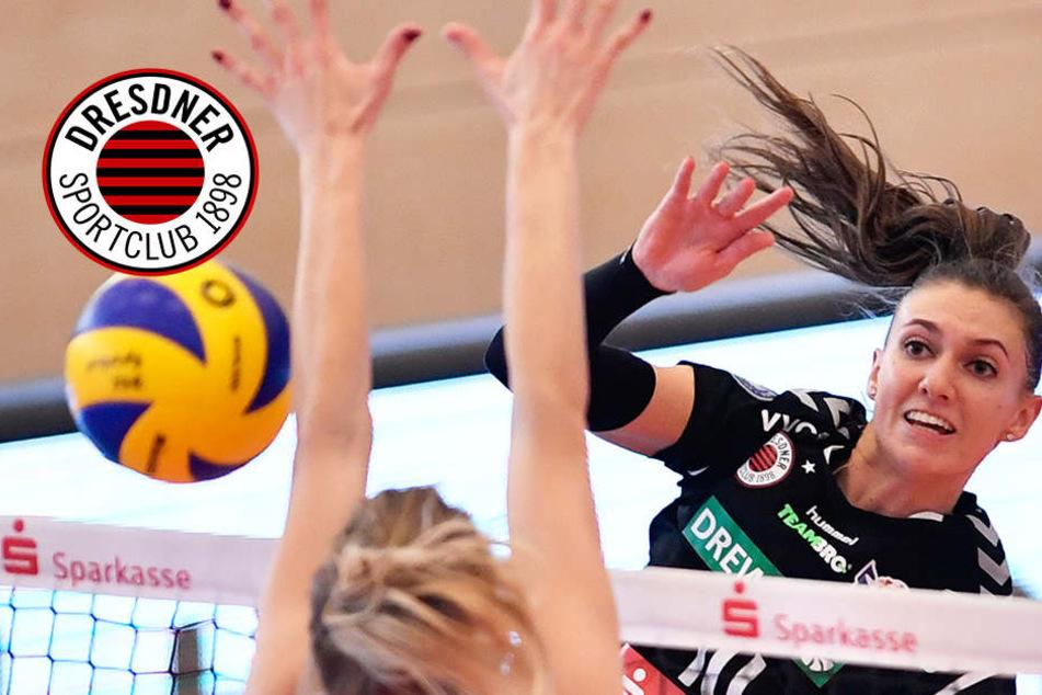 Stärke gezeigt! Dresdner SC gewinnt Heimturnier