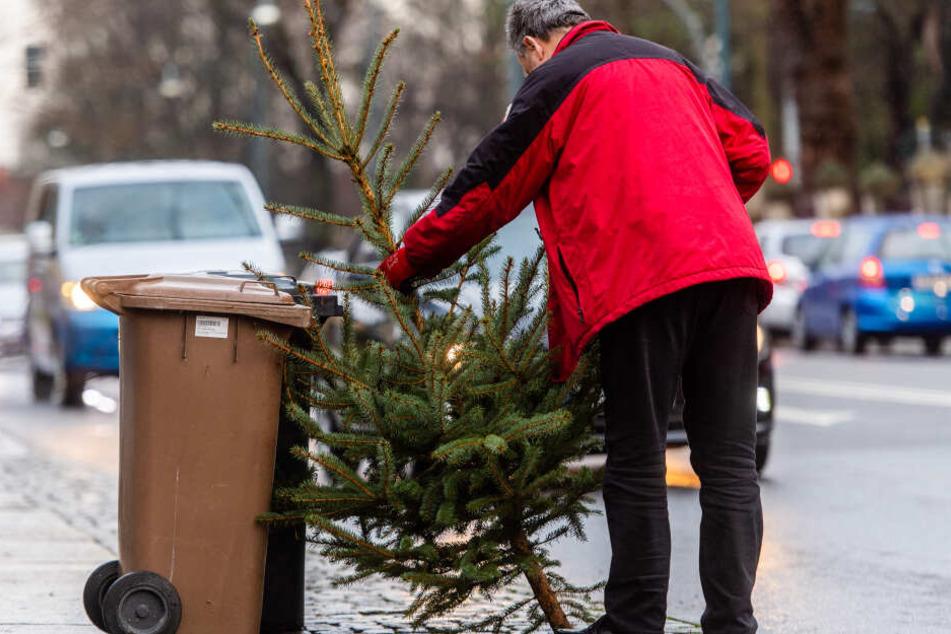 An vielen Orten werden die Weihnachtsbäume an bestimmten Daten von der Müllabfuhr entsorgt – wie hier im Januar in Chemnitz.