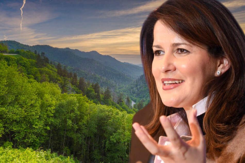 """Bayern investiert 80 Millionen in """"klimafeste Wälder"""""""