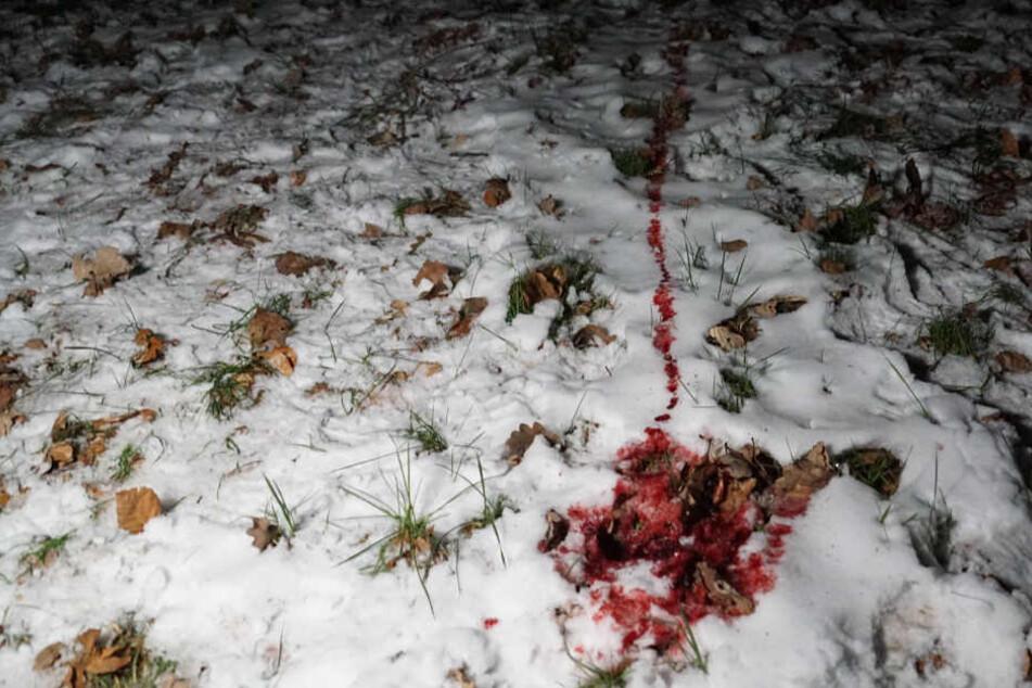 Die meterlange Blutspur. Die Polizei gab mittlerweile Entwarnung.