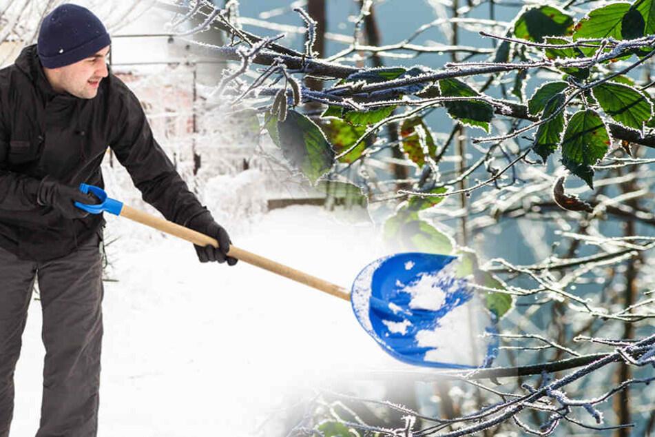 Achtung, es wird nochmal kalt: Winter feiert Comeback in der Region