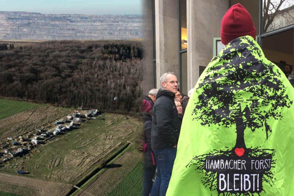 Gericht lehnt Garantie für Erhalt des Hambacher Forsts ab