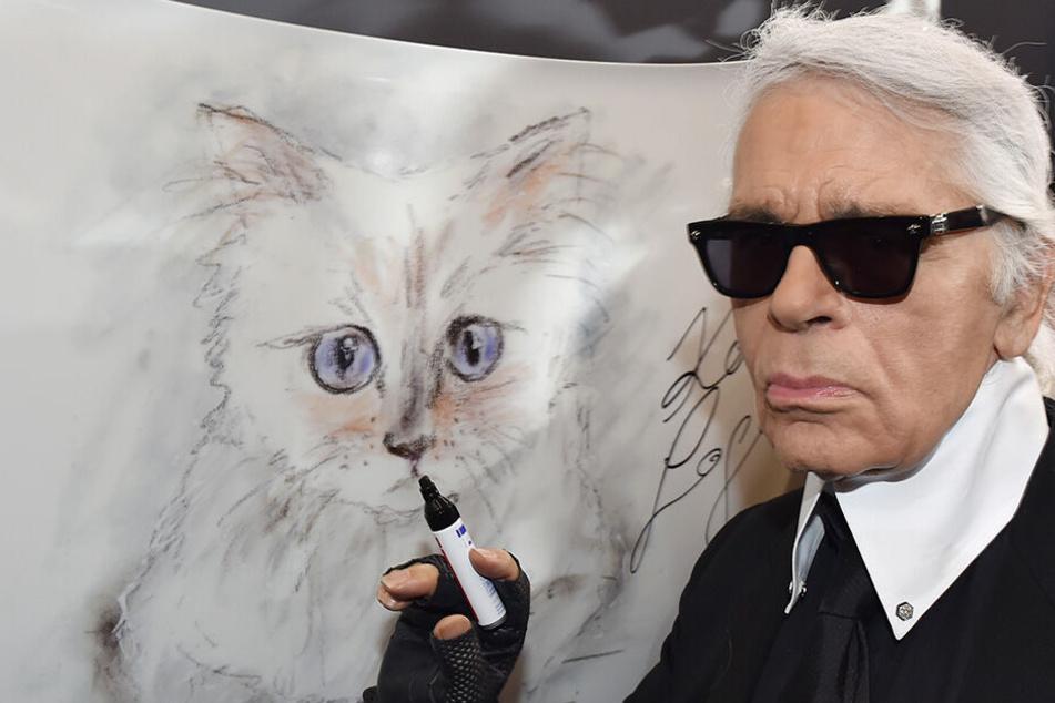 """2015 in Berlin: Karl Lagerfeld steht bei der Vernissage """"Corsa Karl und Choupette"""" für seinen Fotokalender im Palazzo Italia an einer Zeichnung seiner Birma-Katze."""
