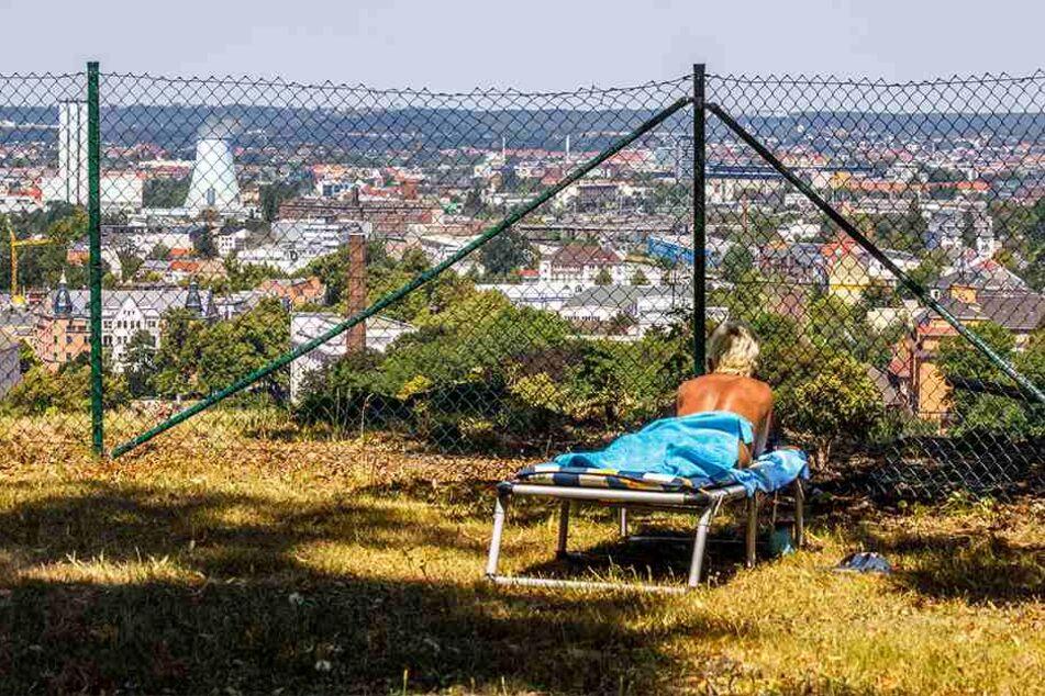 Vor allem Stammgäste zieht es auf die Liegewiese mit Weitblick über Dresden.