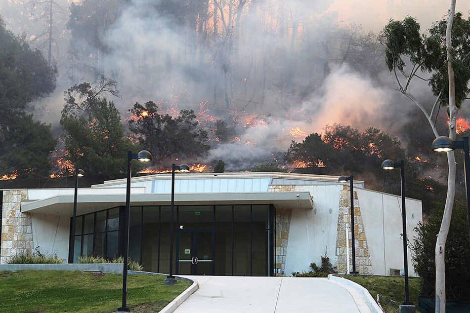 Flammen wüten in einem kalifornischen Wald und bedrohen auch eine in im Pormi-Viertel Bel Air gelegene Villa