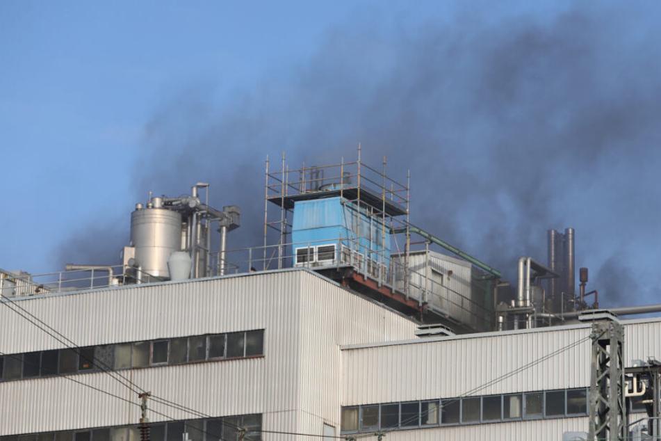 Rauch steigt aus der Industrieanlage am Hamburger Hafen auf.
