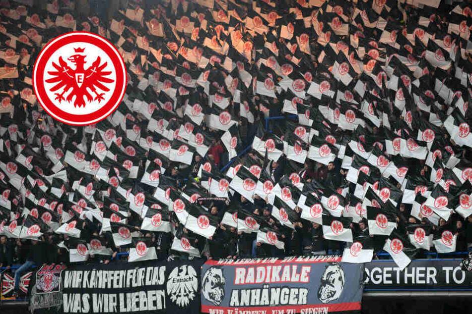 Keine Choreo gegen Salzburg: UEFA verbietet Wunderkerzen-Spektakel der SGE-Fans