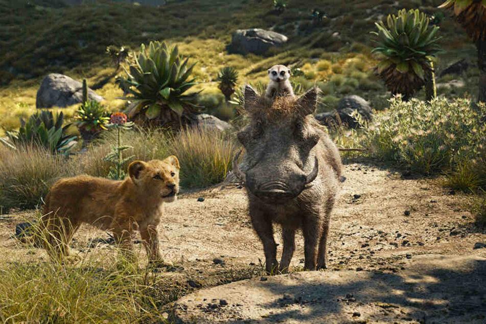 Simba (l.) schließt sich Erdmännchen Timon (oben) und Warzenschwein Pumbaa an und lernt eine alternative Lebensweise kennen.
