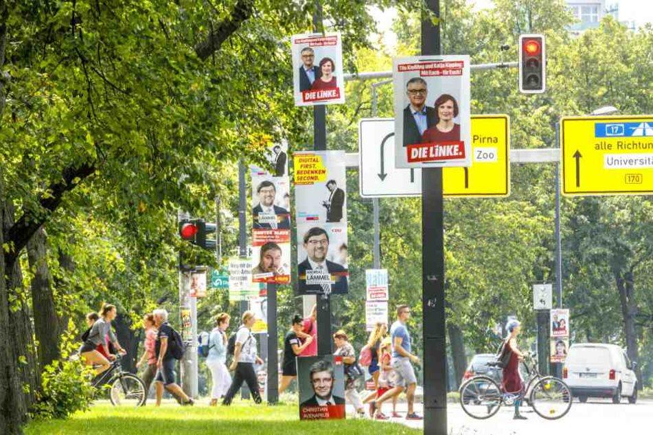 Plakatwald zur Bundestagswahl in Dresden: Die Parteien lassen sich den  Wahlkampf ordentlich was kosten.