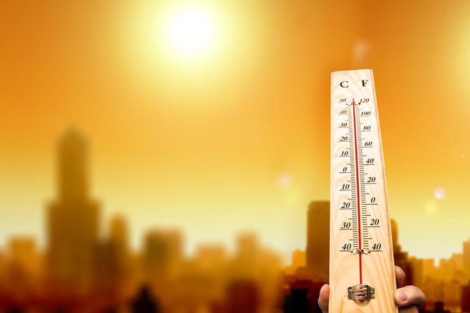 In dieser Woche steigen die Temperaturen gefühlt ins Unermessliche - doch die Mittagszeit ist entgegen dem Irrglauben nicht die Zeit, in der es am wärmsten ist!