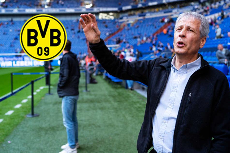 BVB-Coach Favre wackelt auch wegen seines Systems: Es fehlt eine echte Sturmkante!